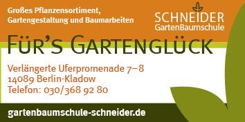 gartenbau, gartengestaltung und baumpflege berlin spandau, Garten ideen